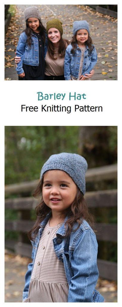 Barley Hat Free Knitting Pattern