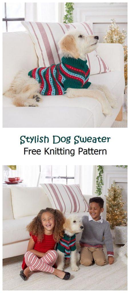 Stylish Dog Sweater Free Knitting Pattern