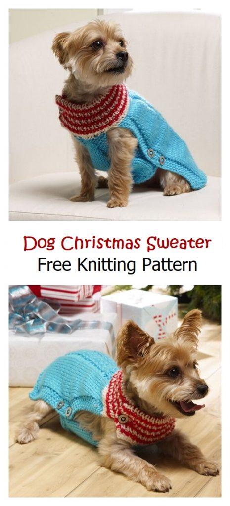 Holiday Dog Christmas Sweater Free Pattern